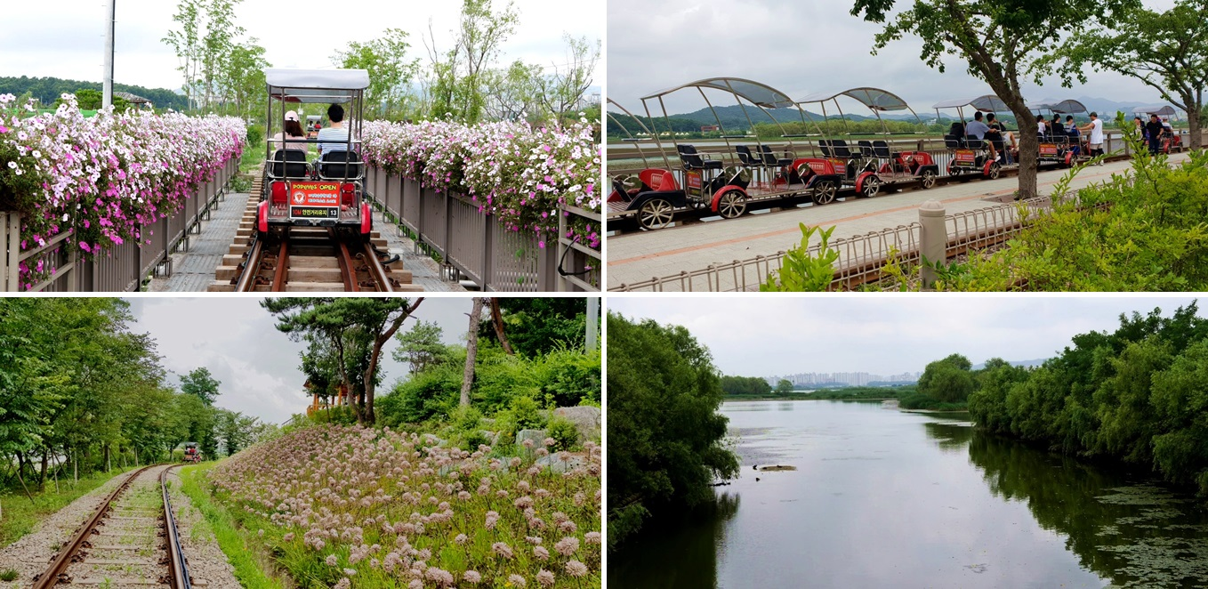 Upper left: A back side of a rail bike passing along white and pink flowers./ Lower left: a course feels like running in the forest with tall trees and a bunch of flowers. And there is a small pavilion as well. / Upper right: a picture of rail bikes of red color running in row. / Lower right: a open view of Wangsong Lake.